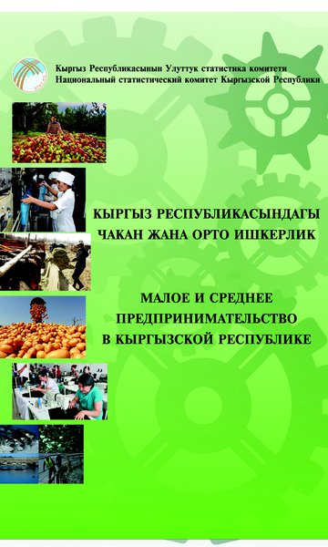 Small and medium business in the Kyrgyz Republic